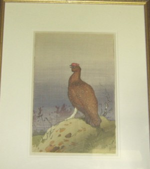 Allen W Seaby woodcut Red Grouse