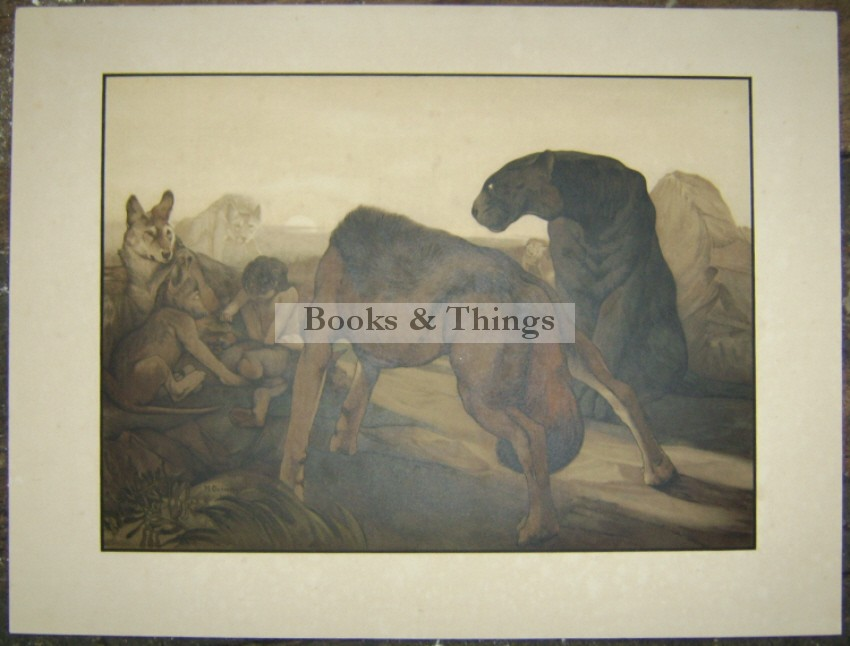 Edward Julius Detmold print The Jungle Book