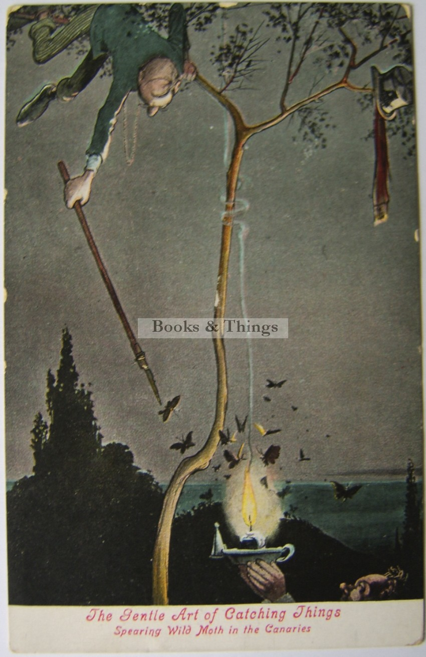 W. Heath Robinson postcard The Gentle Art of Catching Things