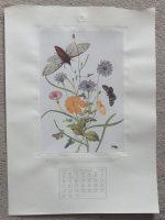 Noel Hopking print5